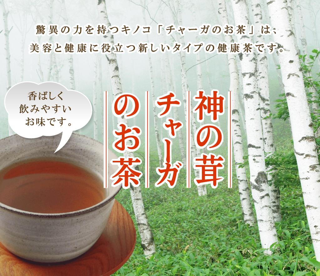 「神の茸」焙煎チャーガのお茶